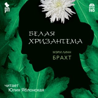 Белая хризантема